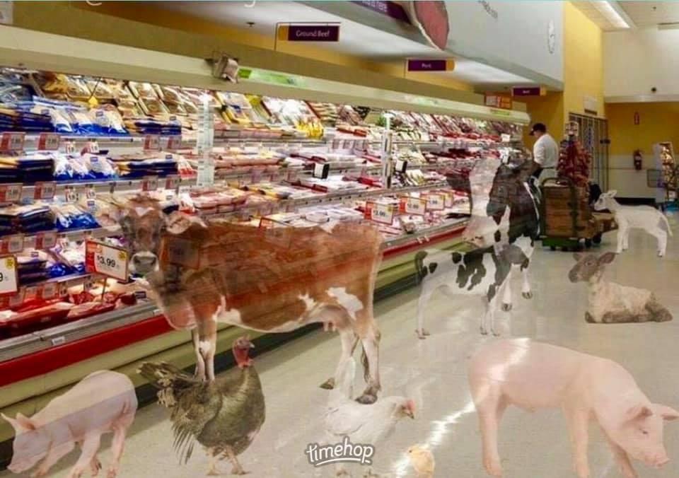 MeatMorgue